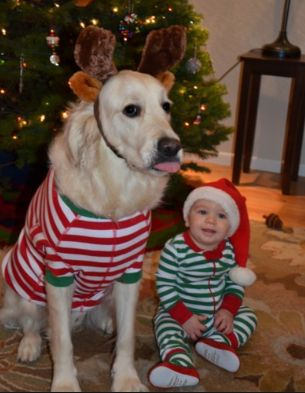 11 Adorable Kids And Their Dogs Dressed Up Together For Christmas First For Women