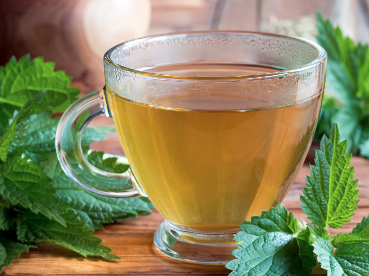 How to Use Nettle Leaf For Hair Growth
