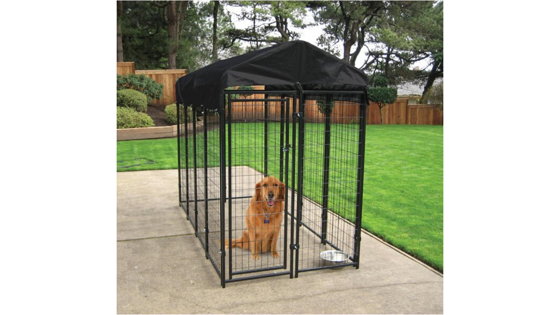 walmart dog kennel