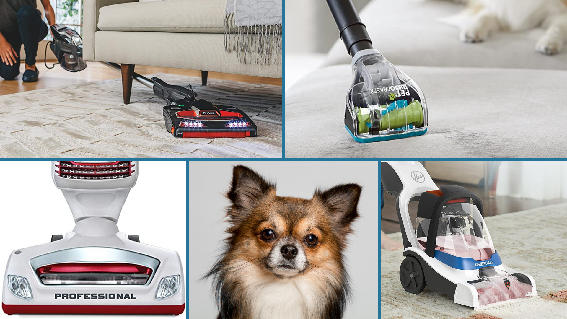 13 Best Vacuum Cleaners For Pet Hair On