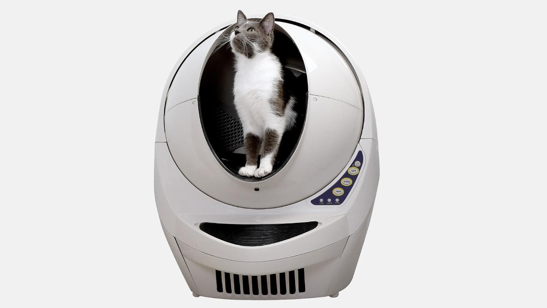 Litter Robot automatic cat litter box review