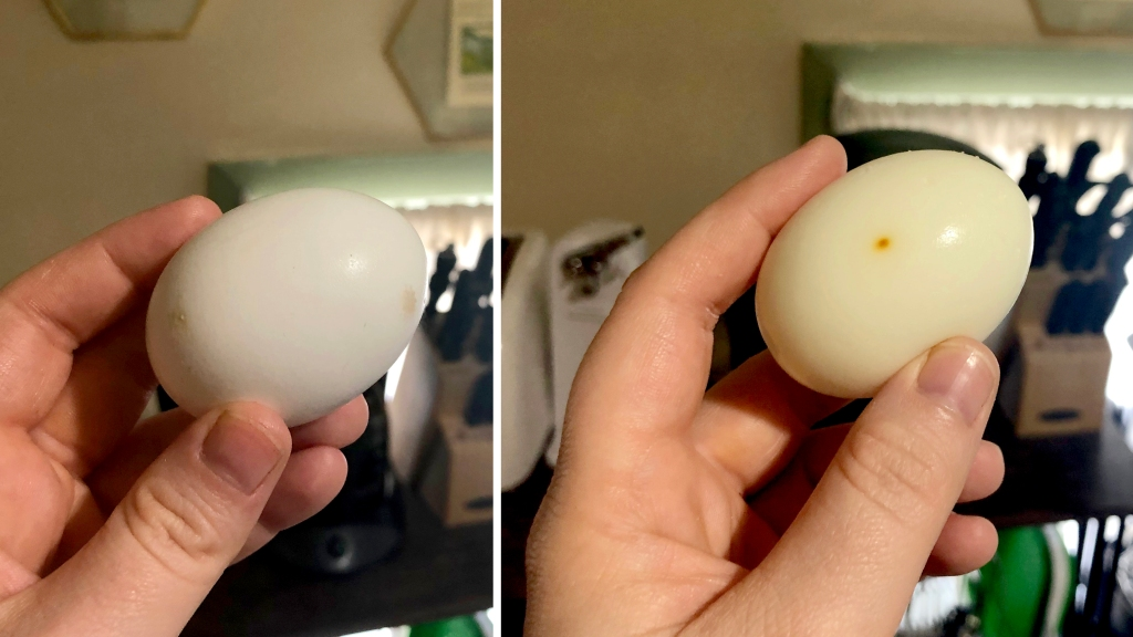 "Unpeeled and peeled egg after ""hard boiling"" in the oven"