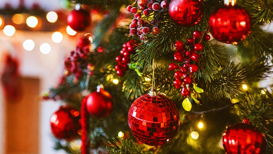 What Your Christmas Tree Says About You Story Image