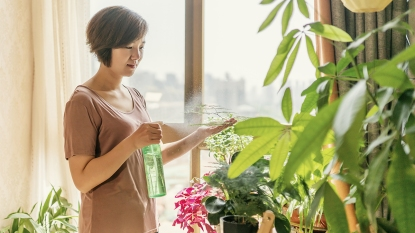 Woman Spraying Her Houseplants