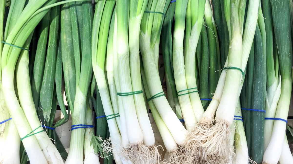 How to Store Green Onions So They Stay Fresh For Weeks (or More)