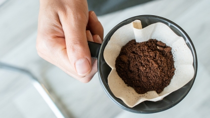 Coffee grounds gardening story image