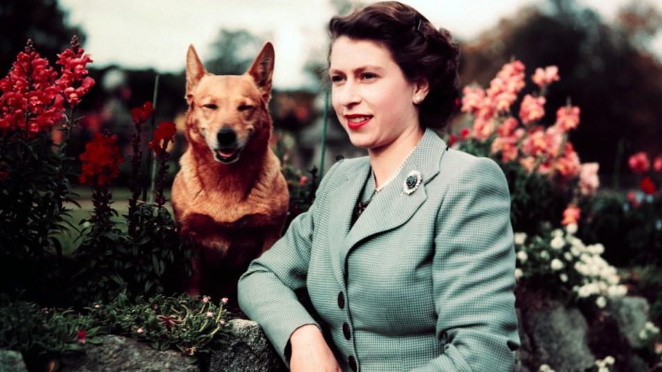Young Queen Elizabeth with a corgi