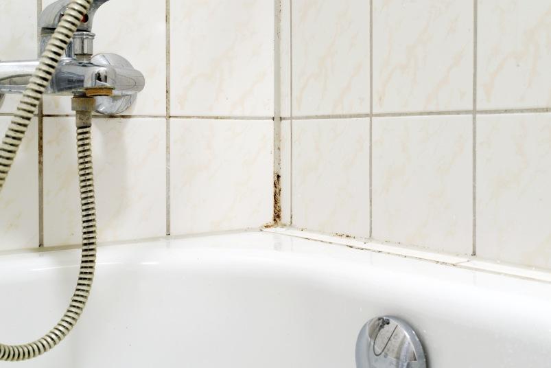 moldy shower corner tiles