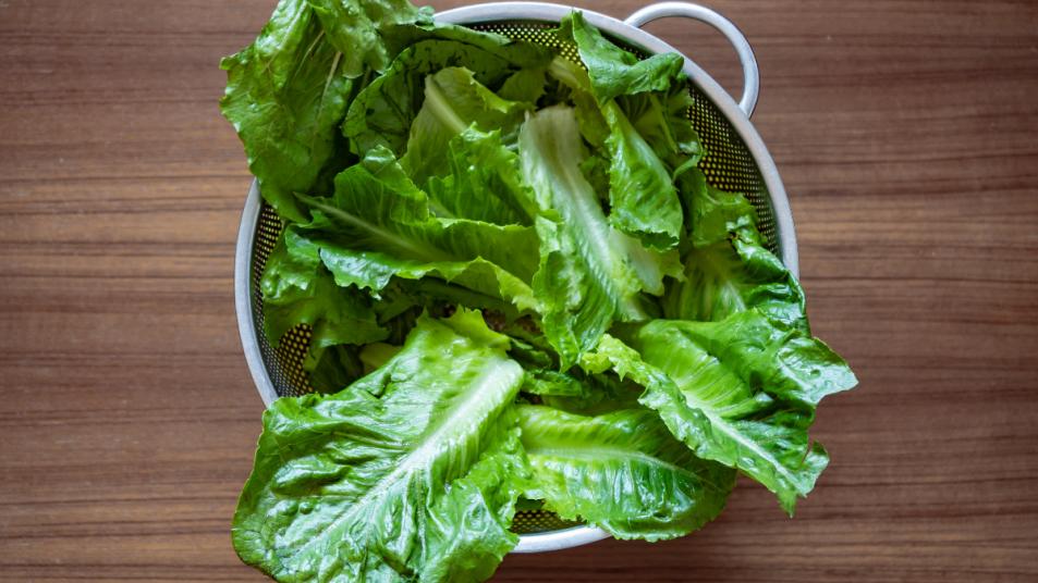 lettuce-rust