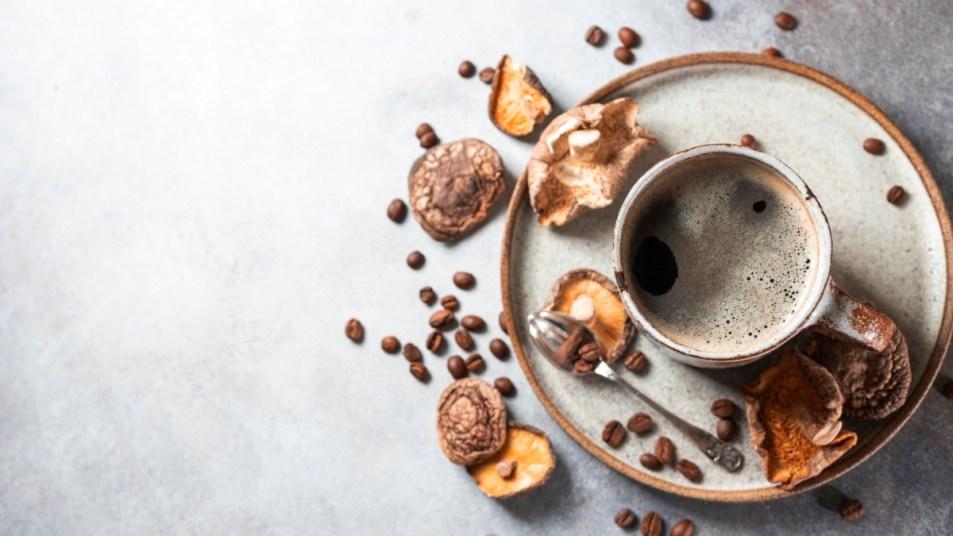 mushroom-coffee-sharpens-memory