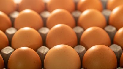 freezing-eggs-last-longer