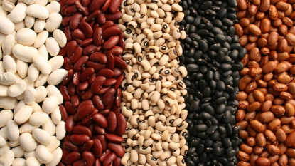 Assortment of dried beans_legumes