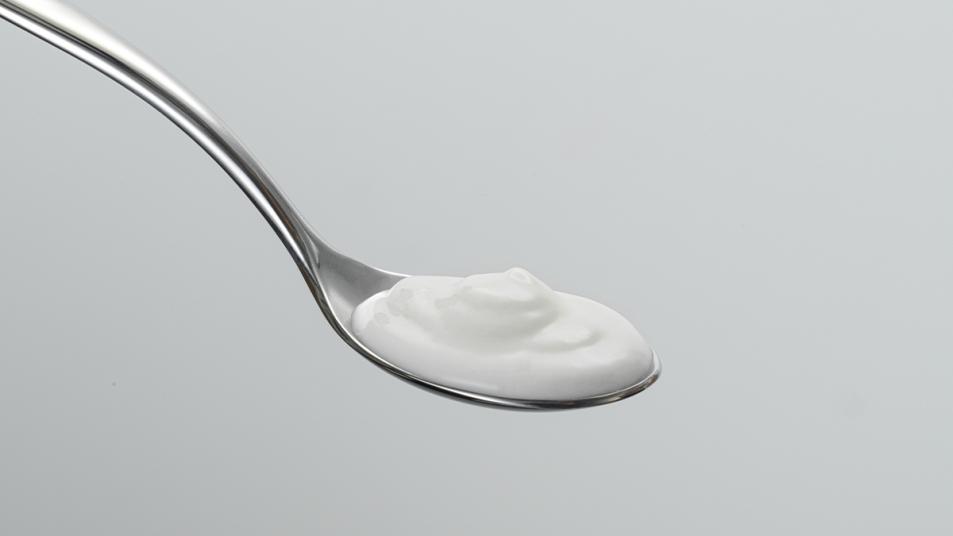 Plain yogurt on a spoon