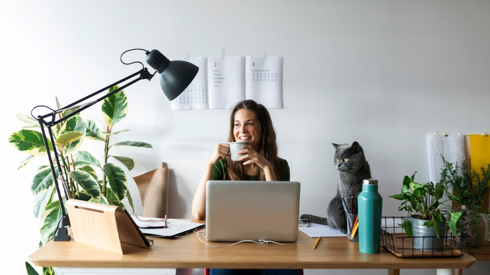 Home office design tips